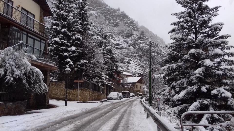Carretera de Fontaneda, Sant Julià  - Carmen Butron