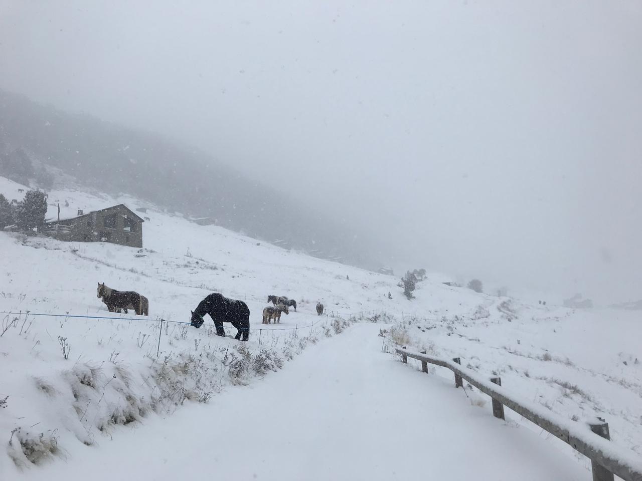 Vall d'Incles - Arnau Casal
