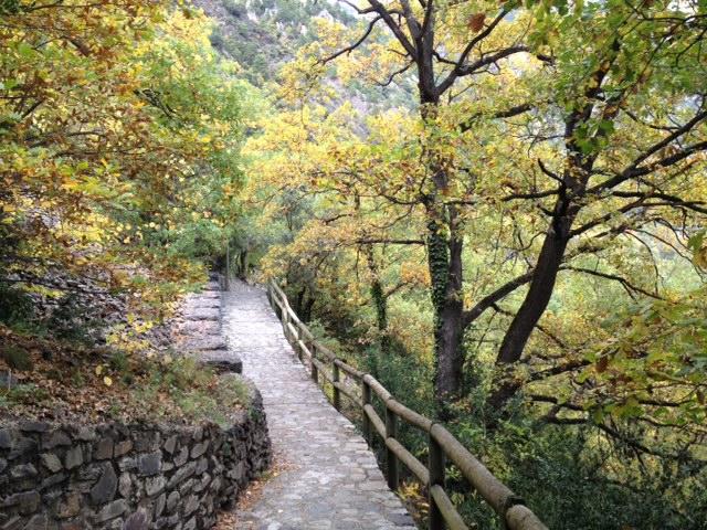 Camí de la Margineda al poble de Santa Coloma - RTVA