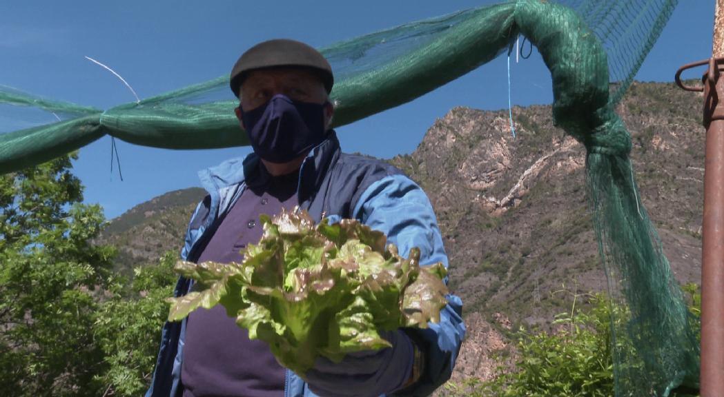 Agricultura considera clau potenciar la producció local i l'economia circular