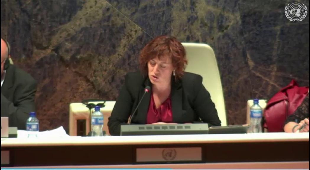 Canòlic Mingorance afirma a les  Nacions Unides que la CASS paga els avortaments a l'estranger