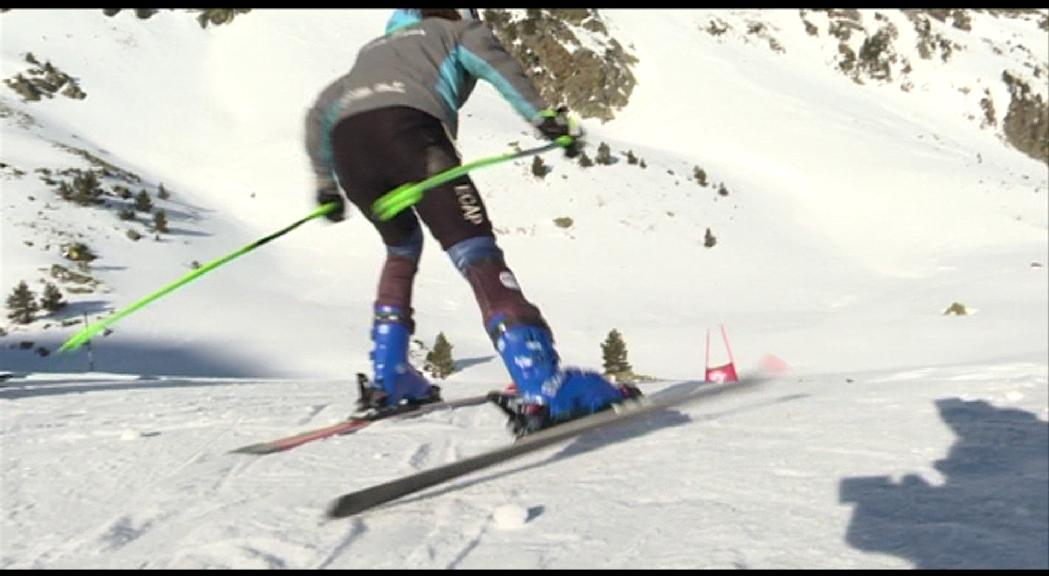 En esquí, l'equip de tècnica d'alpí
