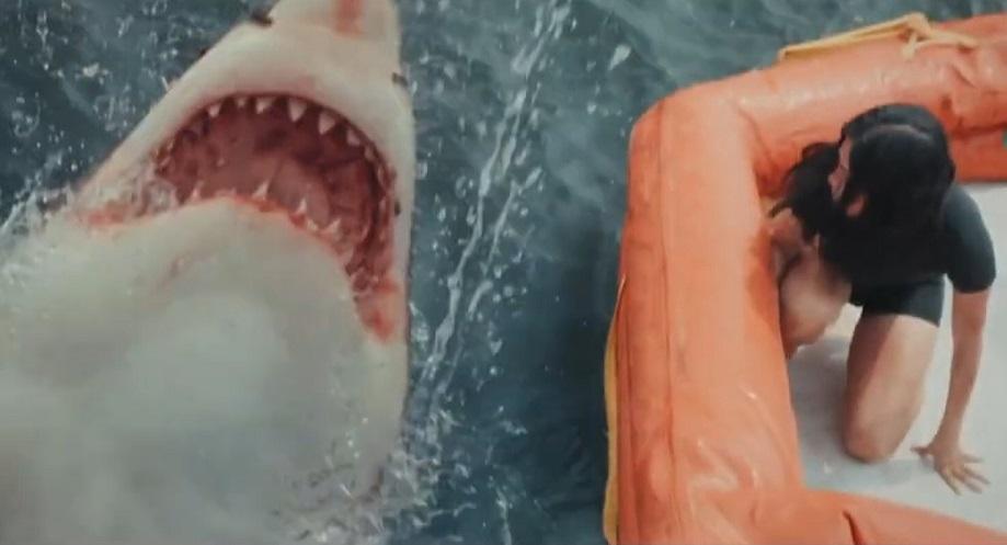 """Estrenes: El darrer thriller de Taylor Sheridan i """"Tiburón blanco"""""""