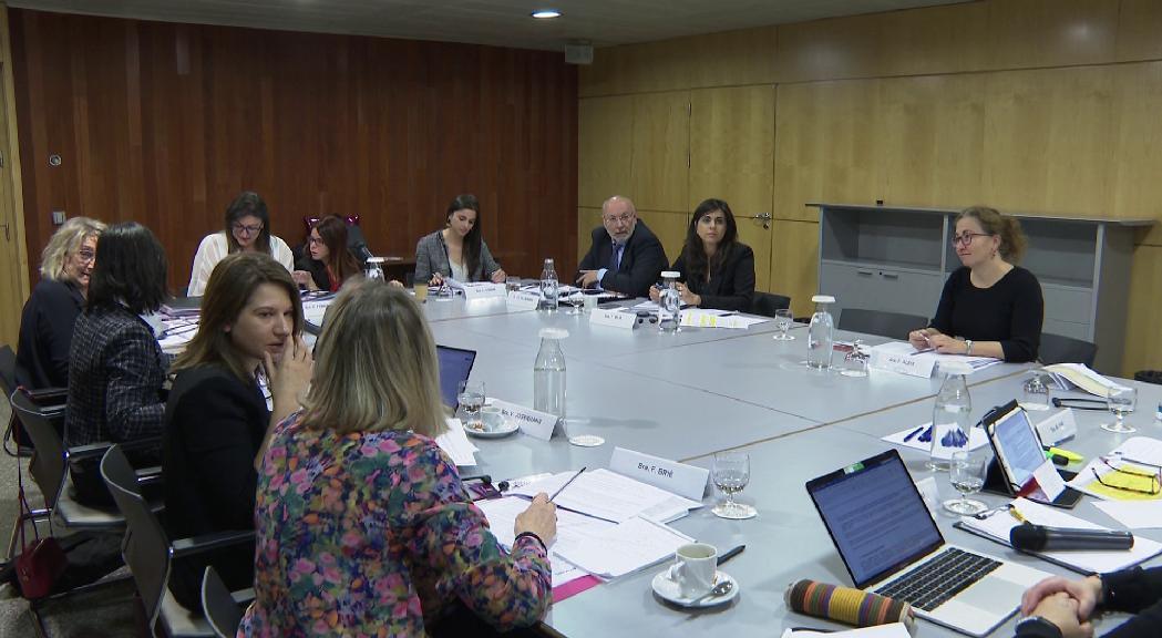 Una delegació del grup d'experts sobre la lluita contra la