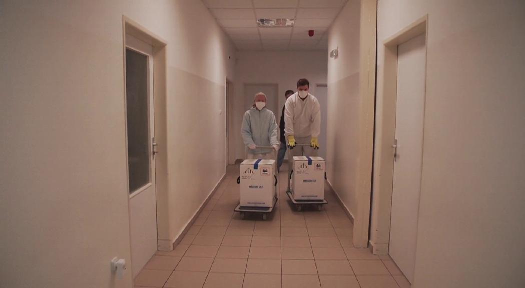 "Martínez Benazet: ""No hem de patir, que tindrem vacunes"""
