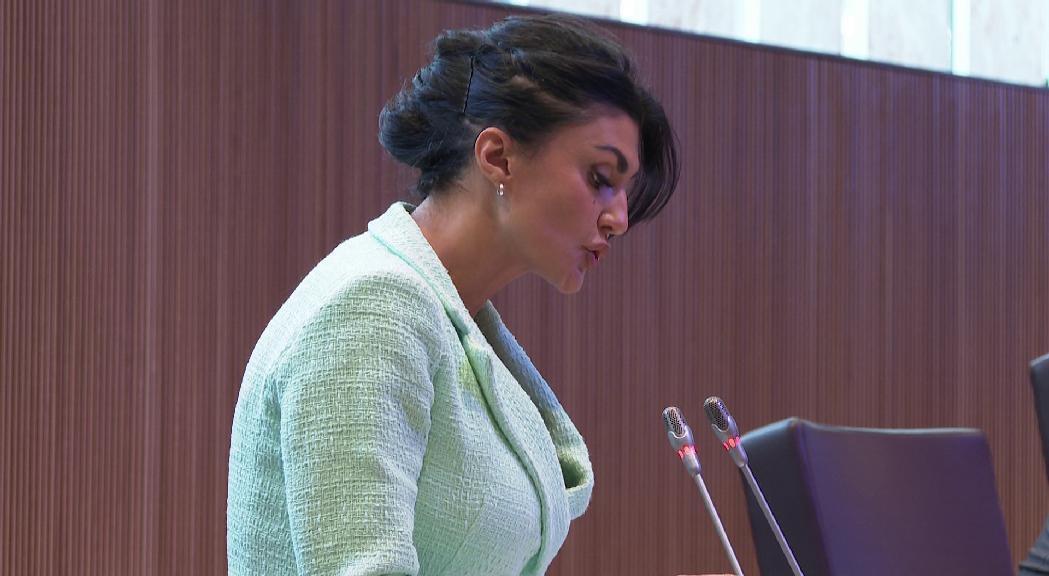 La consellera general no adscrita Carine Montaner demana al Gover
