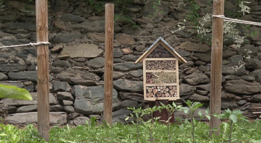 Ordino instal·la als horts de Casa Rossell un dels hotels d'insectes creats per l'Aula Taller
