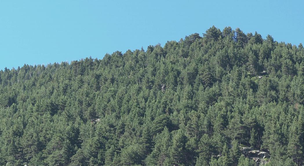 El Parc Natural del Comapedrosa s'ampliarà fins a la zona del Roc de la Cauba
