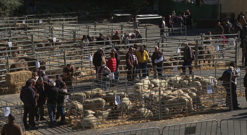 Pas en ferm per a la continuïtat de les explotacions agrícoles i ramaderes