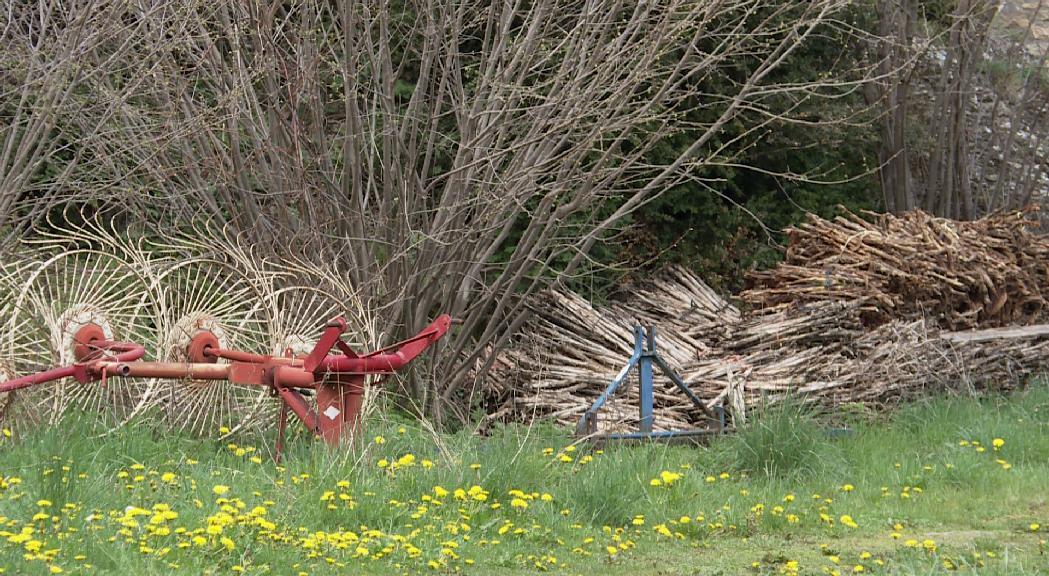 La planta de compostatge de la Cortinada estarà operativa al juliol i costarà uns 20.000 euros