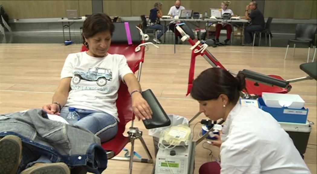 Comença la col·lecta de sang però el registre de donants de medul·la òssia s'ajorna