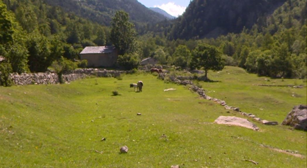 La regulació de l'accés rodat a la vall Madriu s'aprovarà els propers mesos