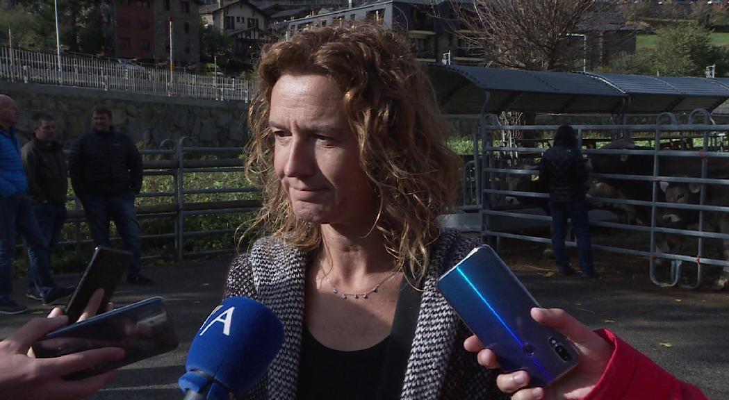 Silvia Calvó veu viables les propostes recollides en la declaraciò d'emergència climàtica