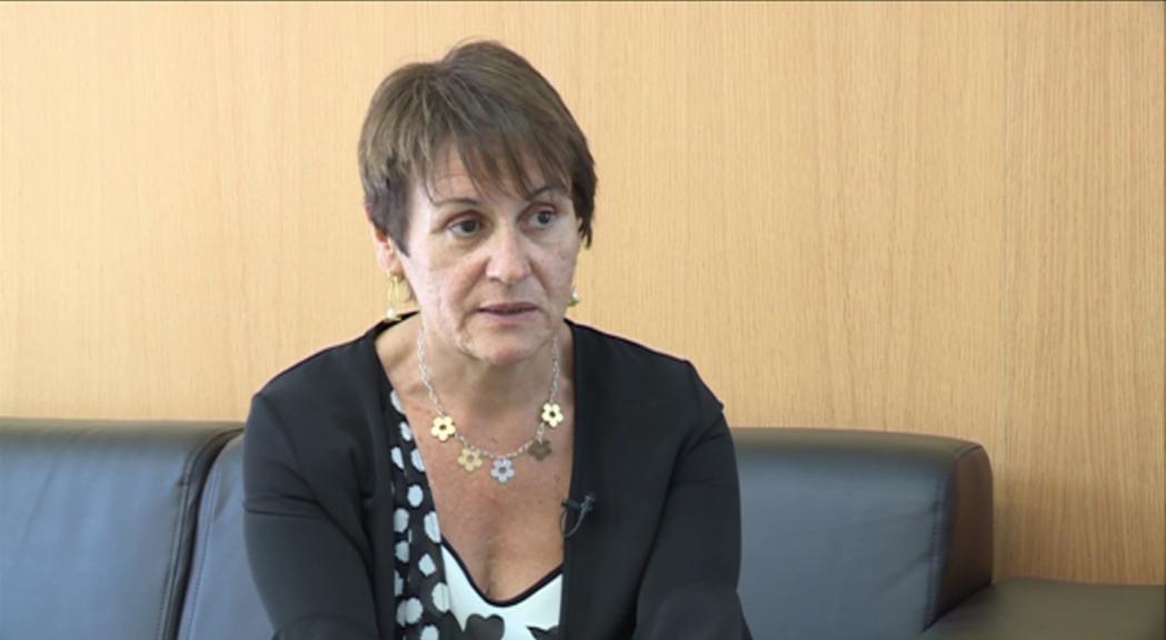 El Consell General veurà reduït el pressupost d'inversió un 5%