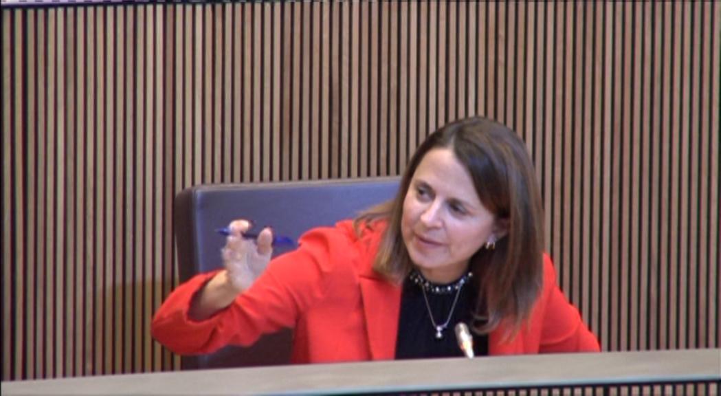 Tensió entre el PS i DA per la llei de reproducció humana assistida, que acaba aprovada