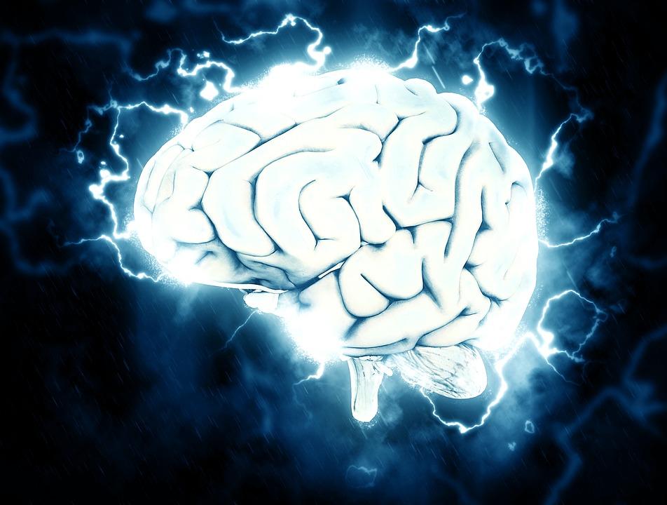I tu, quin percentatge del cervell utilitzes?