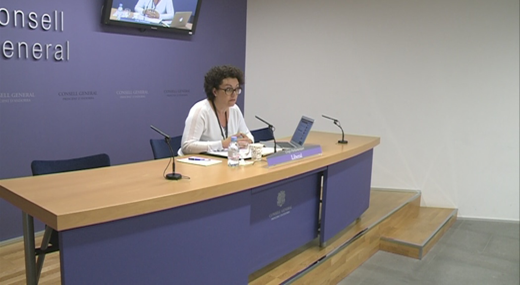 Liberals d'Andorra veu intrusisme i massa burocràcia en la reestructuració d'ocupació