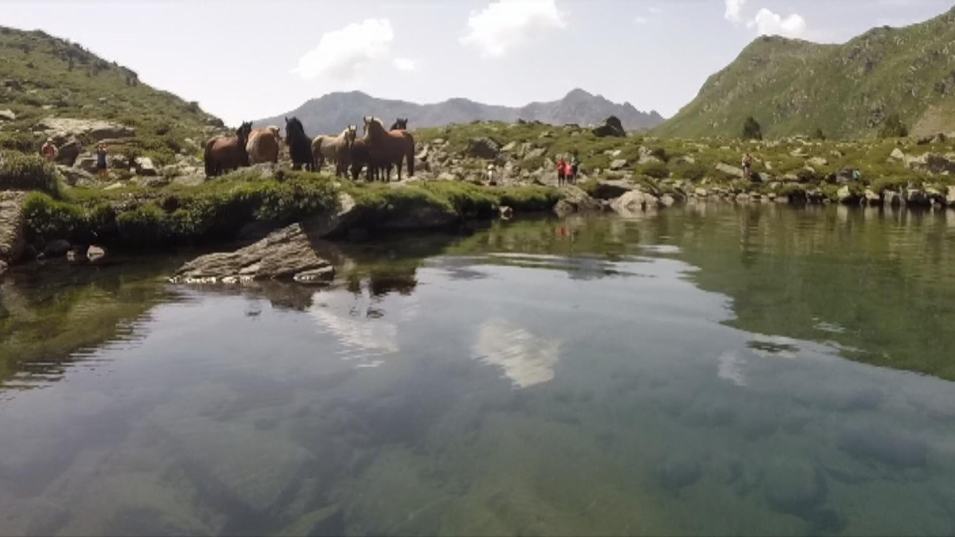 Reportatge: Navegar a Tristaina
