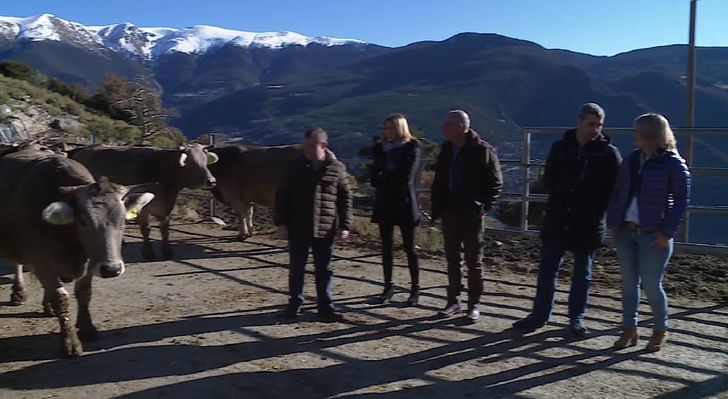 Ramaderia i agricultura, un canvi dràstic a Naturlàndia i l'accés rodat a la muntanya centren la jornada a Sant Julià