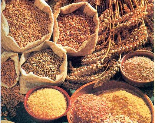 La introducció dels cereals integrals en la dieta s'ha de fer de manera gradual i progressiva