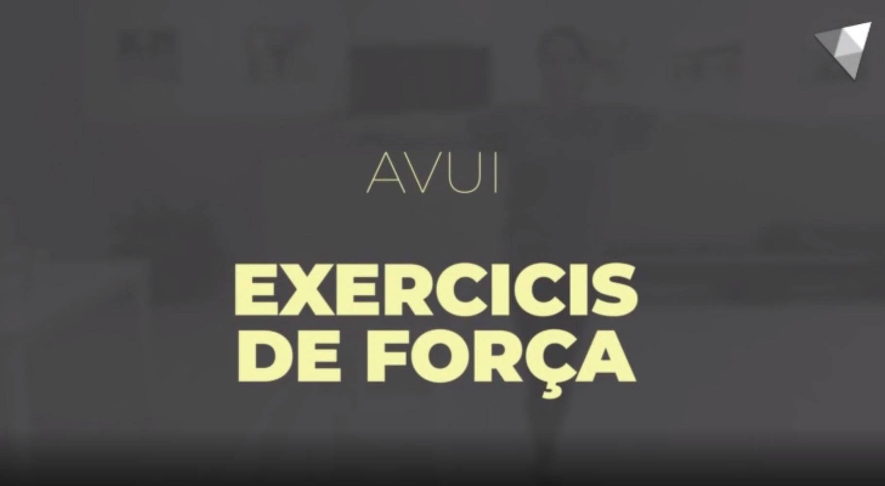 2 - Exercicis de força