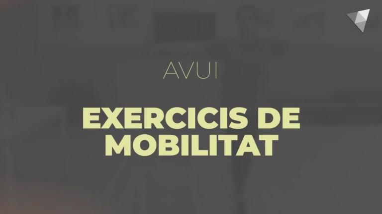 1 - Exercicis de mobilitat