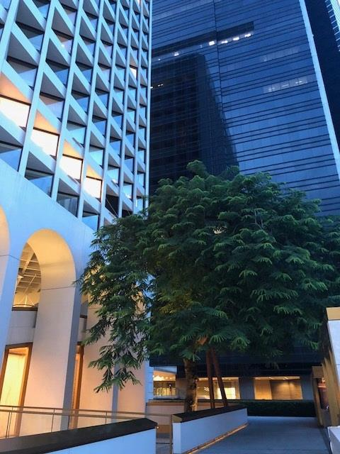 Kowloon, Wan Chai i Central