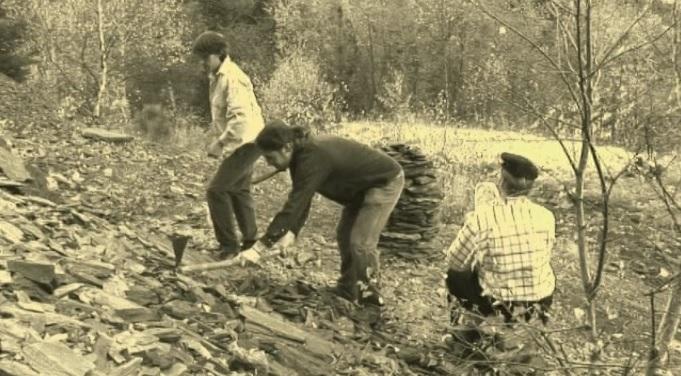 Històries - Els fets de prats de Molló