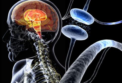 L-Mental - La clau del Parkinson