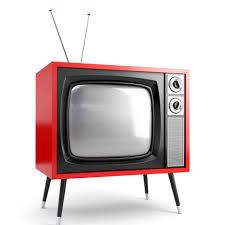 Televisió i safareig amb Viviana Besolí