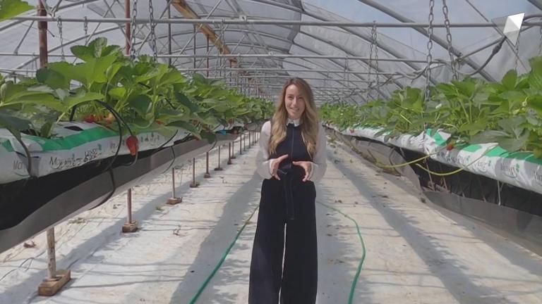 Capítol 32 - Tecnologia aplicada a la congelació de la fruita, els nous cultius ecològics de proximitat i el test a Mònica Bonell