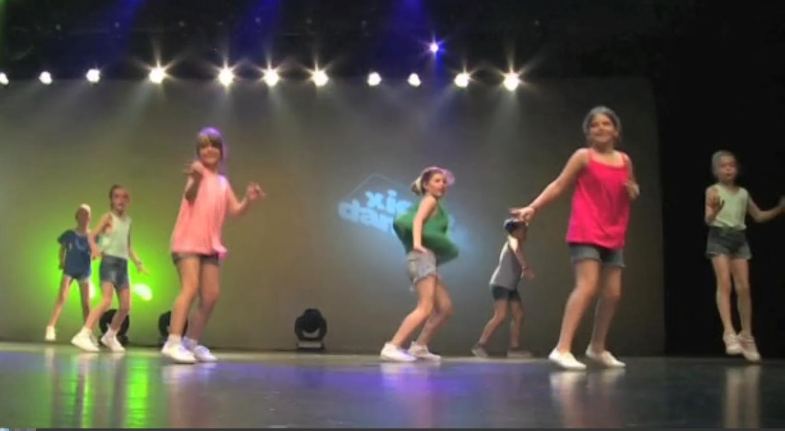 Xic & Dans - Resum 2016