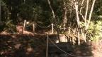 El vell forn de calç de la Margineda, al descobert